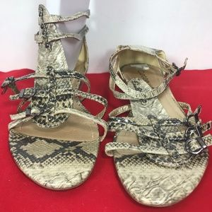 Coconuts by Matisse Snakeskin Gladiator Sandals  7